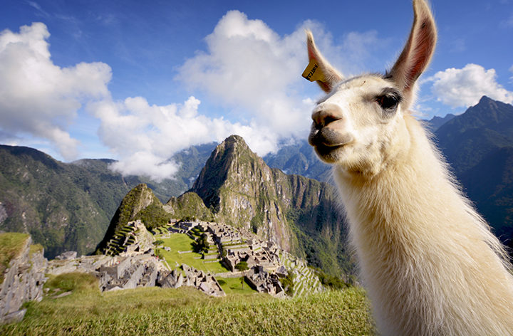 James Walker's sabbatical takes him to Peru